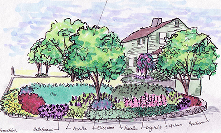 Austin ganim landscape design llc fairfield ct for Garden design sketches