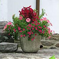 Seasonal Planter in Red Shades